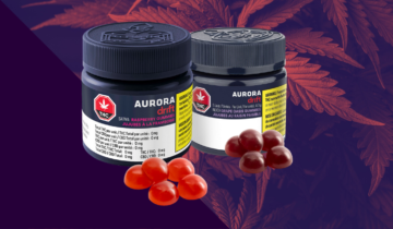Shiny Bud Picks: The Edibles You Should Try